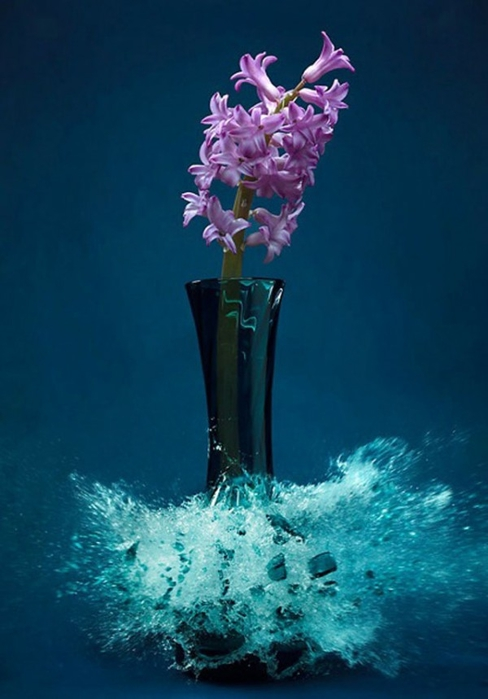 Взрывающиеся вазы с цветами от Martin Klimas