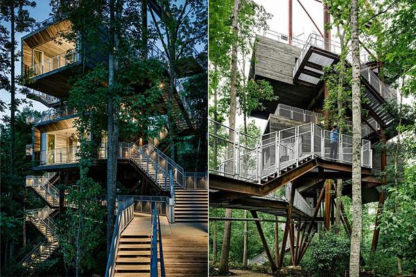 Sustainability Treehouse - ��� �� ������ � �������� ���������.