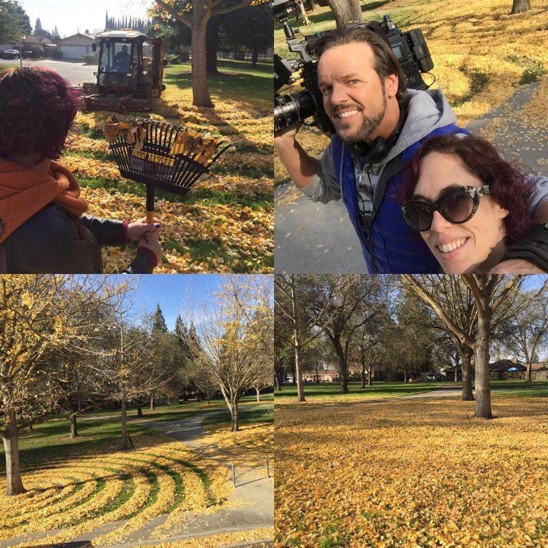 Преподавательница радует студентов узорами из опавших листьев