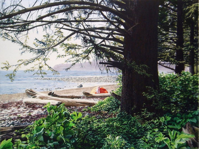 Оранжевая палатка. Автор: Tim Gardner.