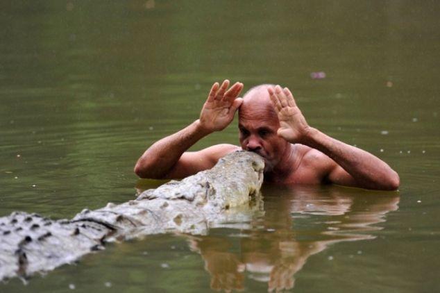 Самый ласковый крокодил 2