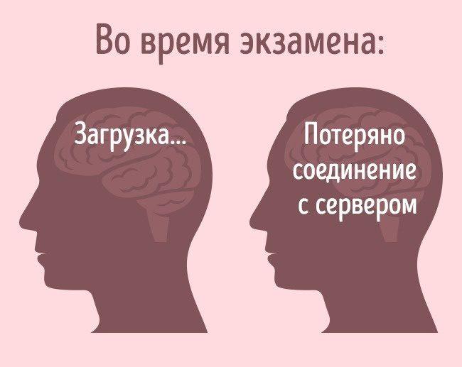 Как мы сами влияем на наш мозг