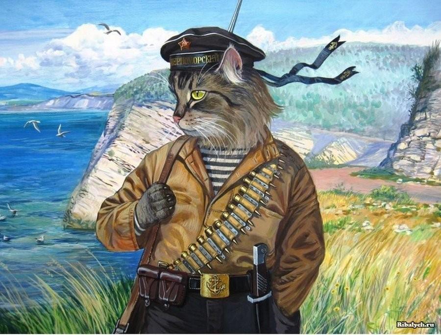 Воено-морской кот Василий