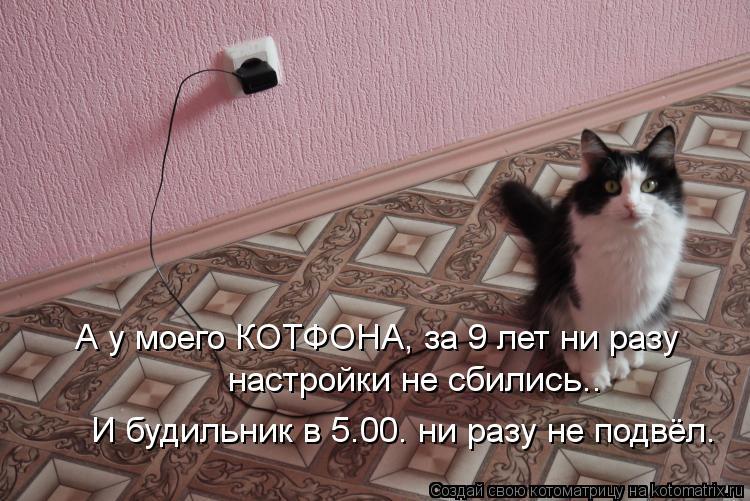 Котоматрица: А у моего КОТФОНА, за 9 лет ни разу  настройки не сбились.. И будильник в 5.00. ни разу не подвёл.