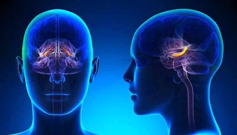 Болезнь Альцгеймера: НЕ ПРОПУСТИТЕ тревожные признаки!