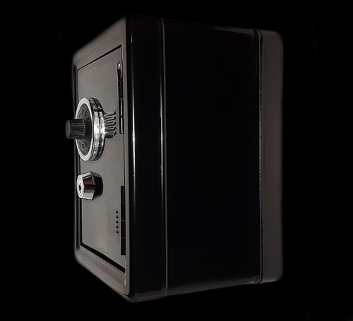 В Москве у безработной девушки украли сейф с 21 миллионом рублей