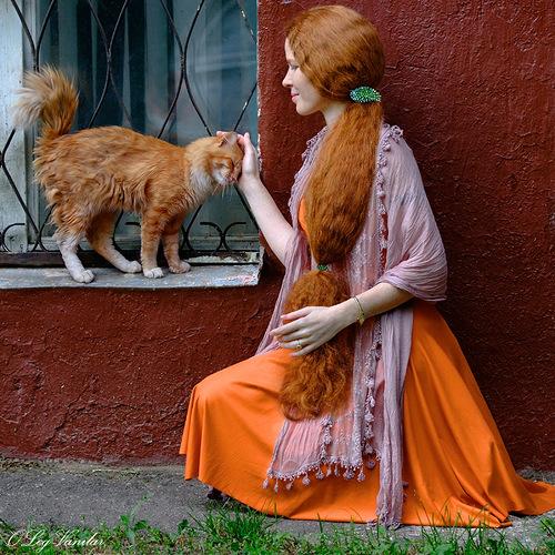 Энергетическая совместимость женщины и кошки, кошки по знакам зодиака