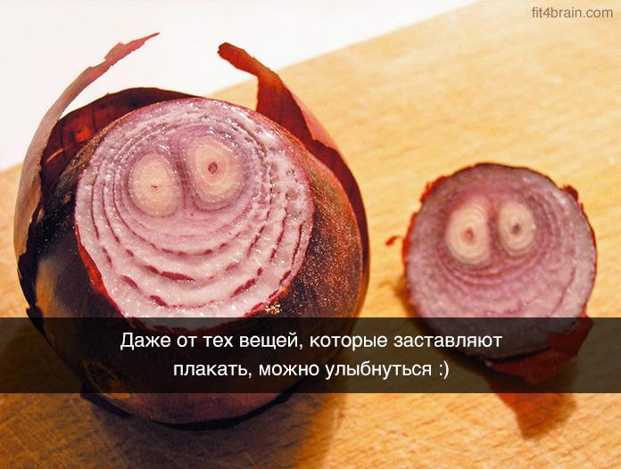 http://img-fotki.yandex.ru/get/2914/136468307.1e/0_f12ab_7bff64e6_orig.jpg