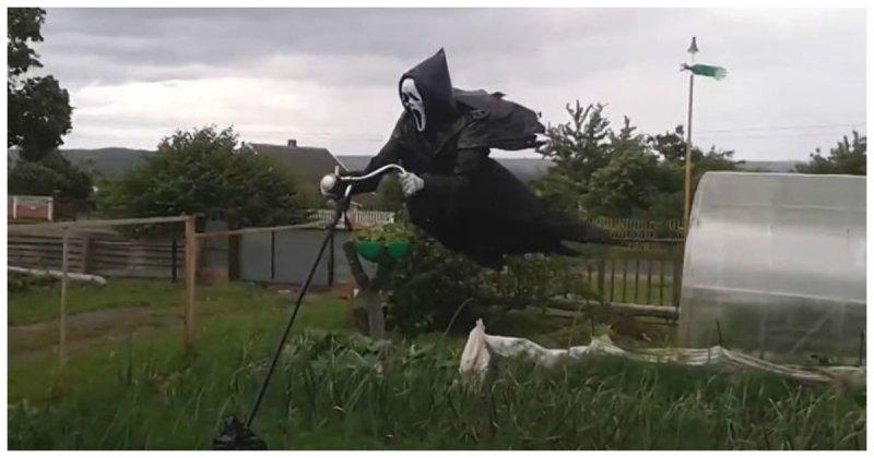 Огородное пугало как спонсор инфаркта воров и соседей