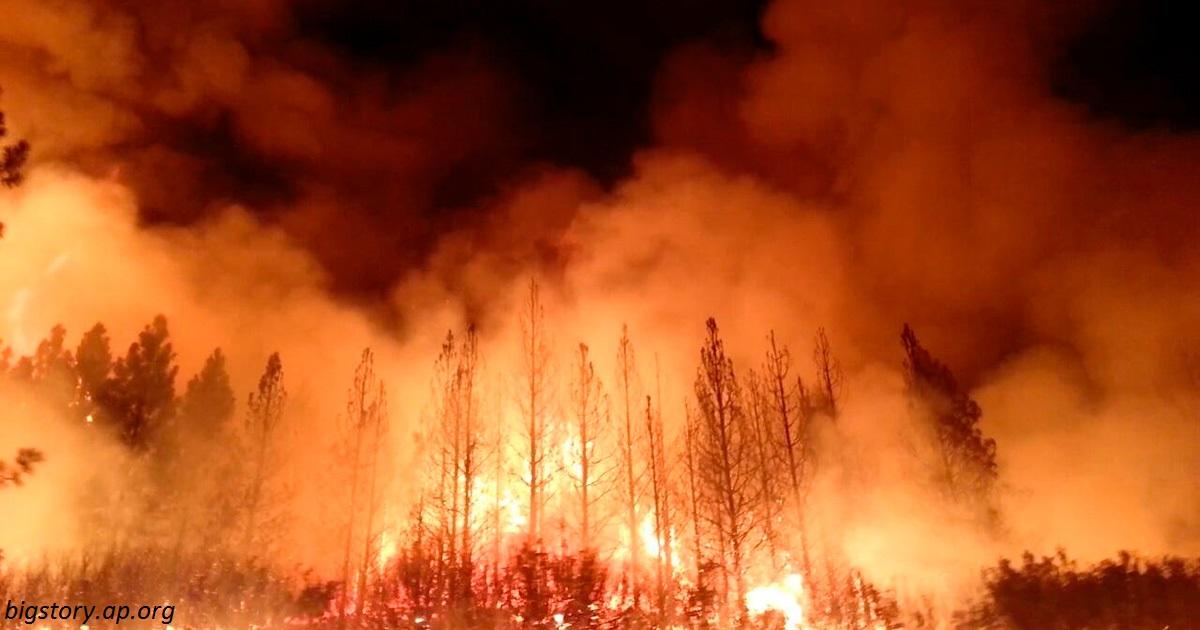 Американские богачи нанимают ″частных пожарных″, пока остальная Калифорния объята огнем