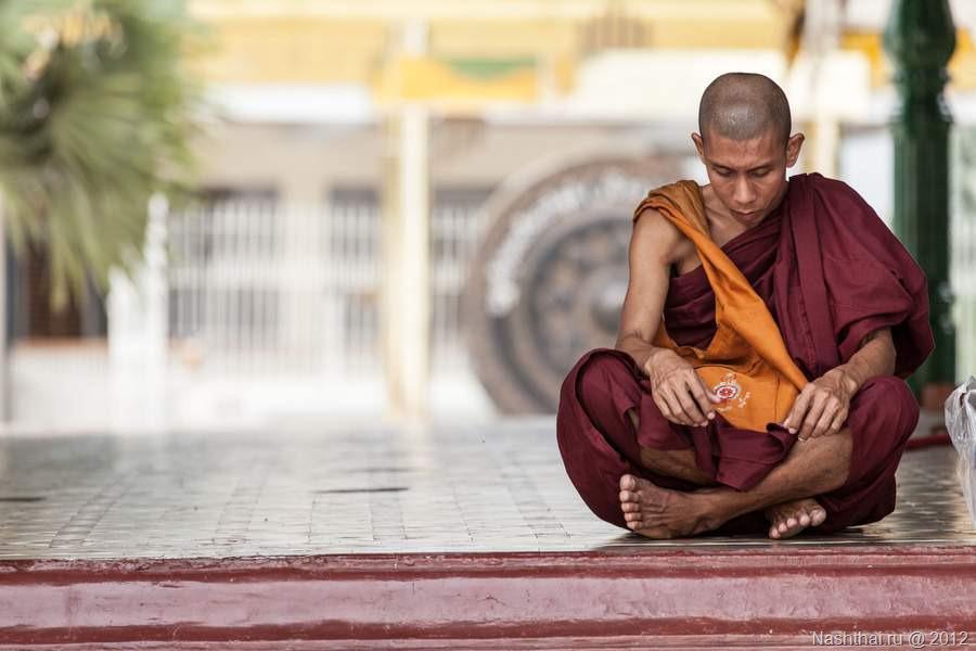 Буддийский монах: Я знаю, почему на добро люди отвечают злом