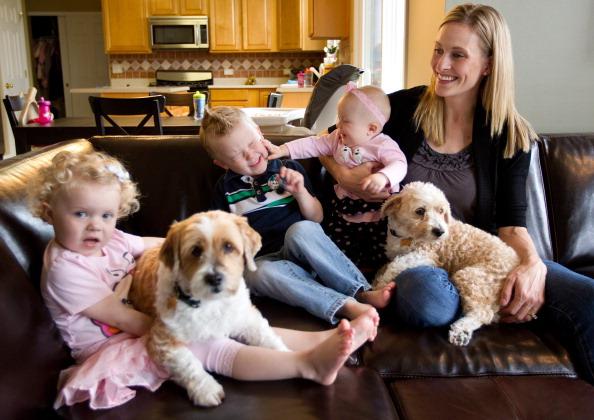 Аллергия на животных: взгляд иммунолога
