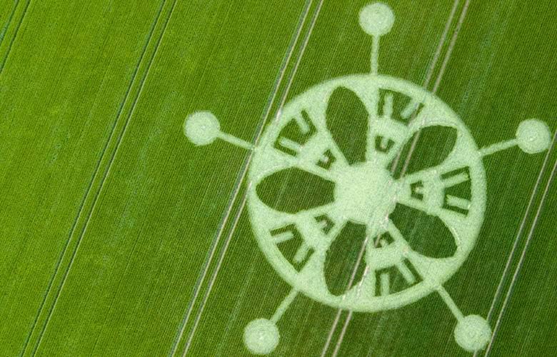 Загадочный рисунок на поле в…