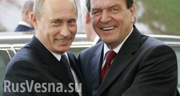 Стабильность в мире невозможна без России, — канцлер Германии | Русская весна