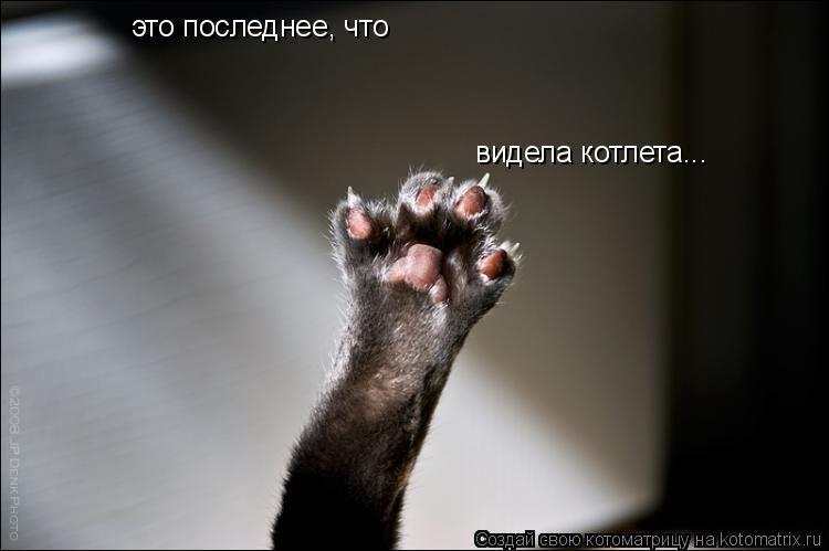 А дома жрать мы не можем...)))