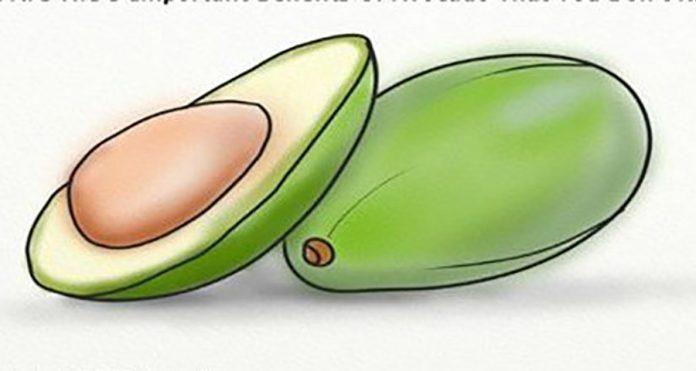 Это 5 важных преимуществ авокадо, которые вы не знаете