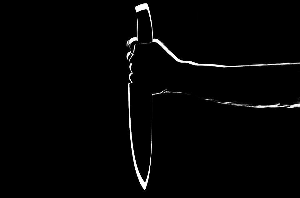 В Ленобласти 16-летняя школьница напала с ножом на первокурсников