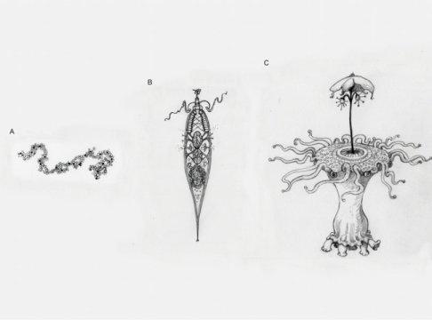 Как на самом деле выглядит инопланетная жизнь: новое исследование биологов