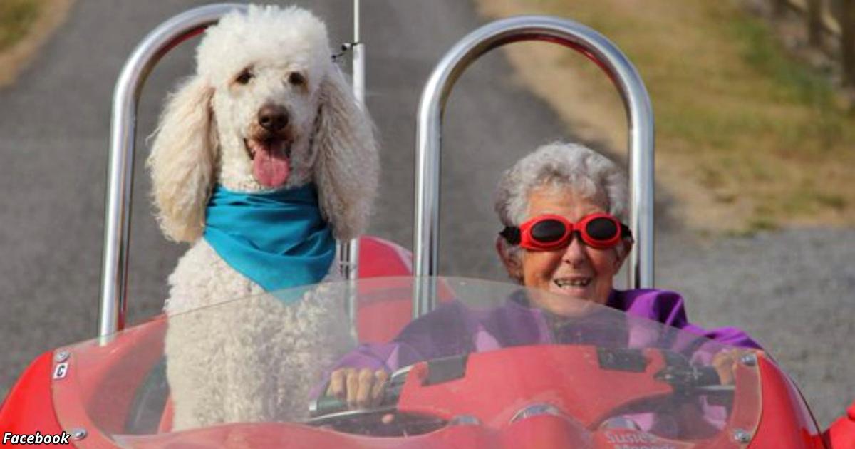 В 90 ей поставили страшный диагноз. Но она послала врачей куда подальше!..