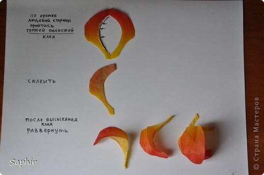 Поделка изделие Бумагопластика цветы из гофробумаги  мастер-класс Бумага гофрированная фото 4