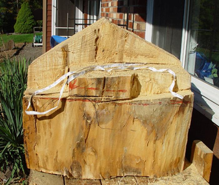 Невероятно реалистичная  скульптура из дерева - вы будете поражены!