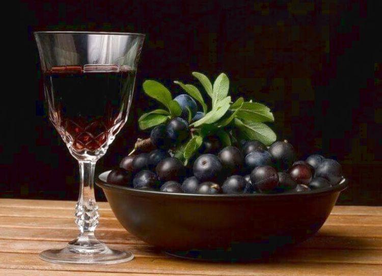 Терновка: лучшие рецепты наливки из терна