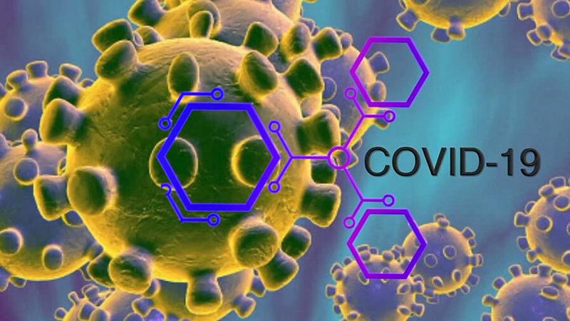 Питательные вещества, которые помогут защититься от коронавируса