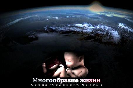 Многообразие жизни. Серия «Человек». Часть I (2013)