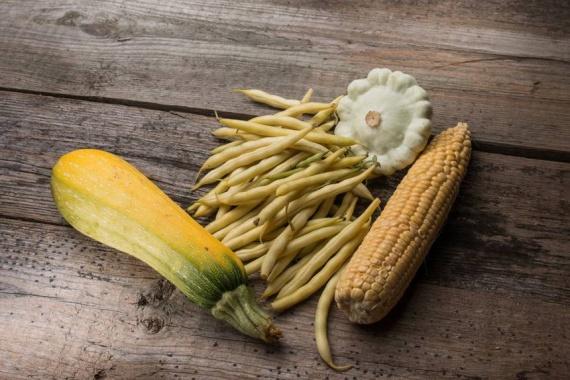 Три сестры: посадка кукурузы, бобов и сквоша вместе