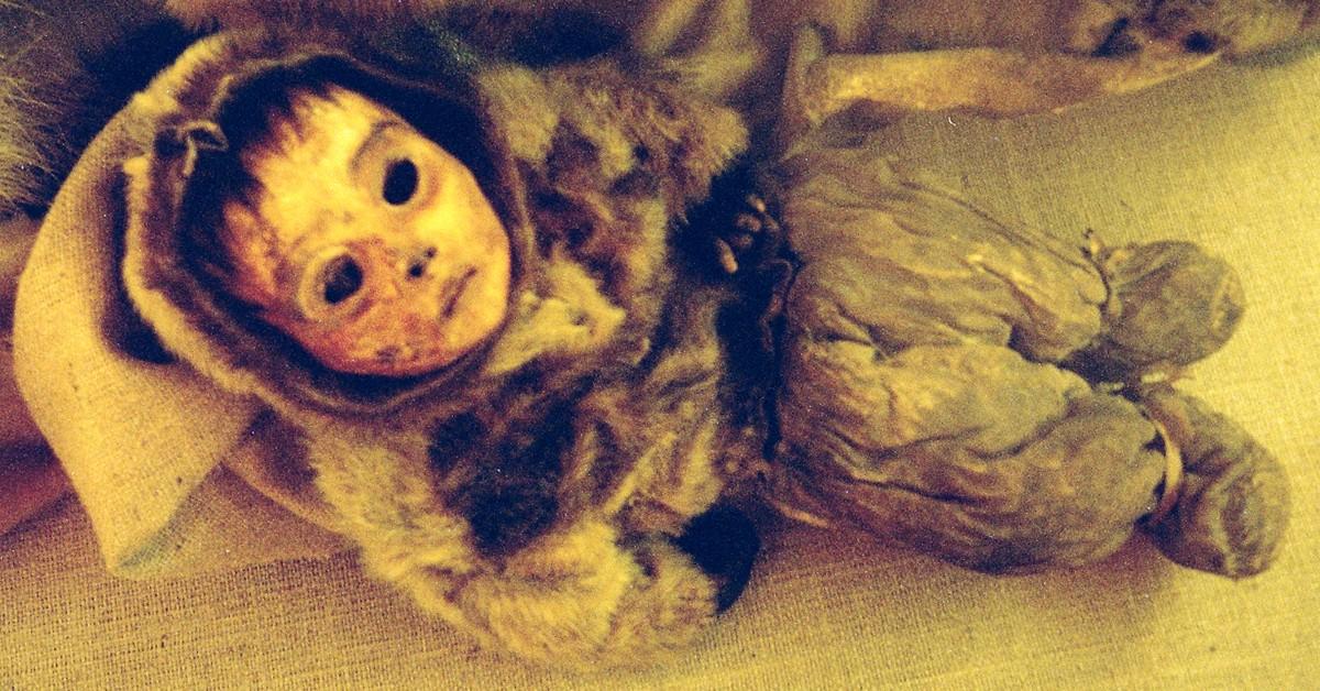 mummies02 13 самых жутких мумий мира