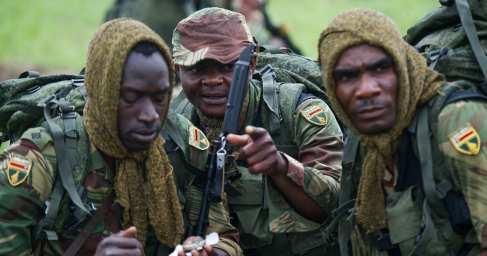 Разведчики из Зимбабве потерялись в сибирской тайге