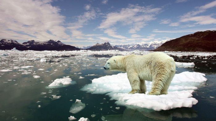 8. Глобальное потепление вещи, названия