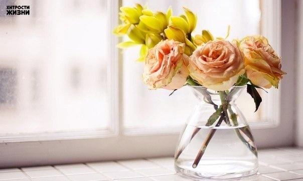 Чтобы розы дольше стояли