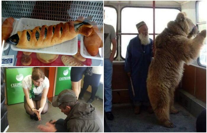 18 фотографий, которые доказывают, что Россия и ее жители непобедимы