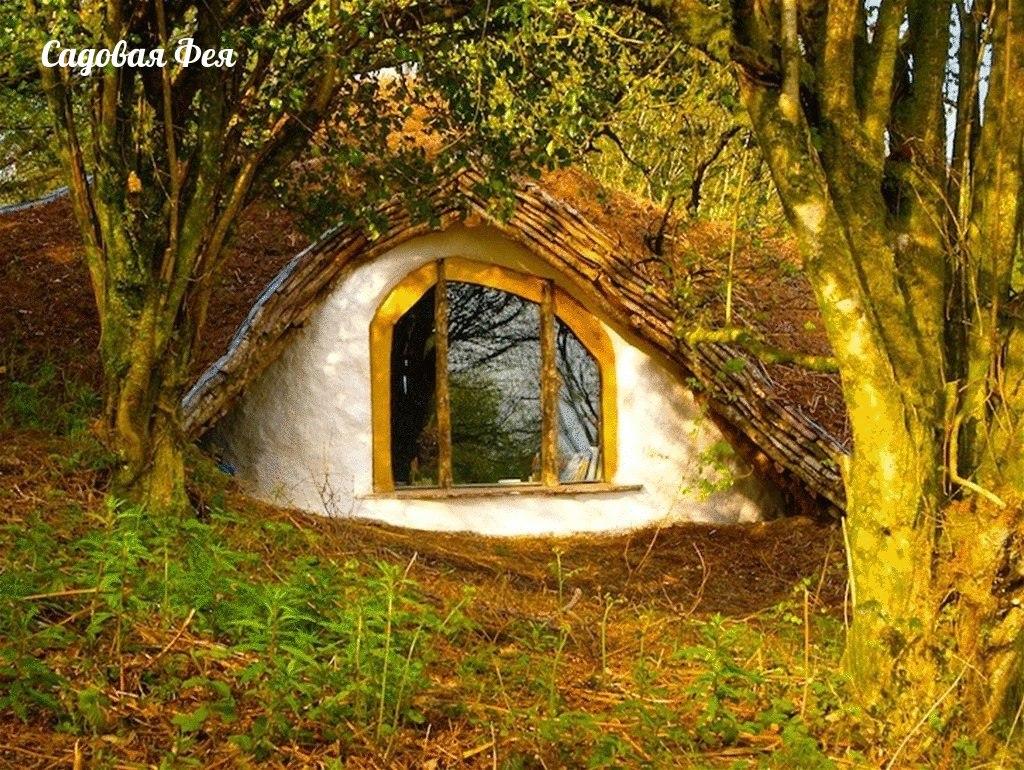 Смотреть дом в лесу своими руками