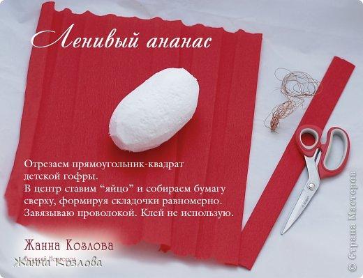 Мастер-класс Свит-дизайн МК ананас из рафаелло фото 2