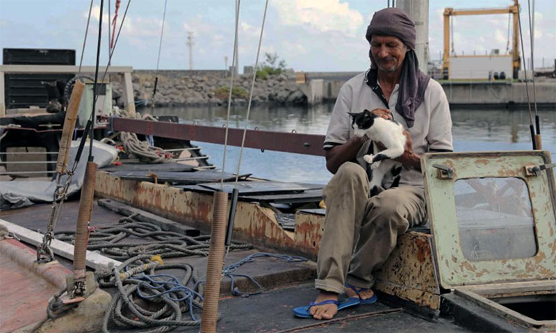 Поляк со своей кошкой 7 месяцев дрейфовали в океане