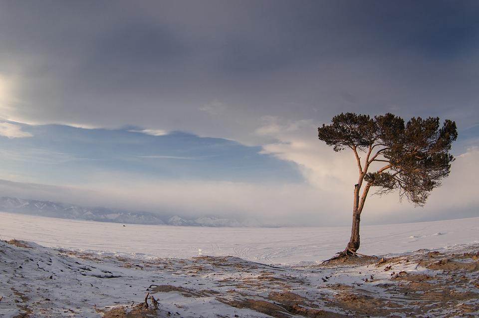 Северная зима чем-то похожа на женщину: очень красива, но иногда может стать последней в жизни. / maxpixel.net.