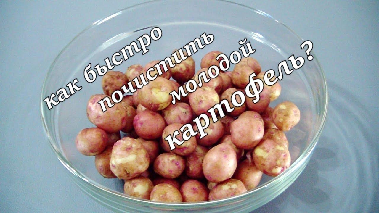 Как почистить быстро молодой картофель