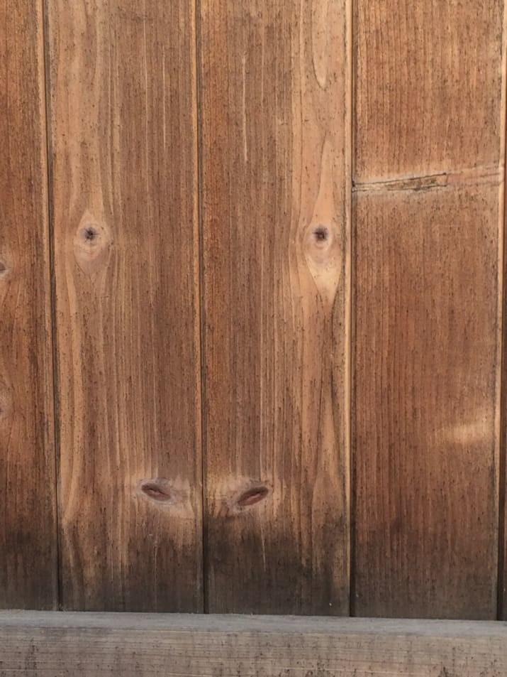 Забор в прошлой жизни был коровой животные, обман зрения, подборка, показалось, прикол, удачный кадр, фото, юмор