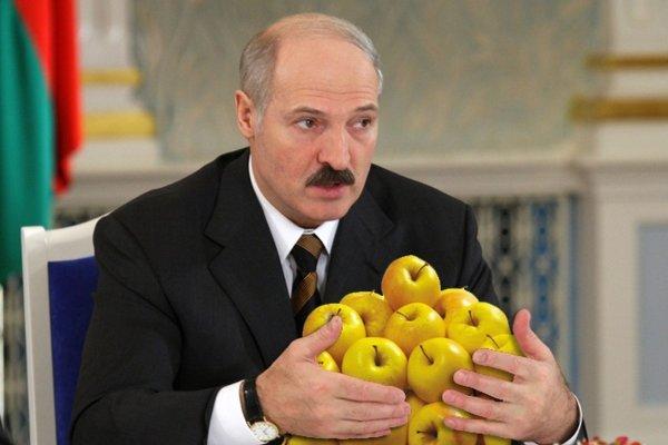 Все польские яблоки - скушает Лукашенко