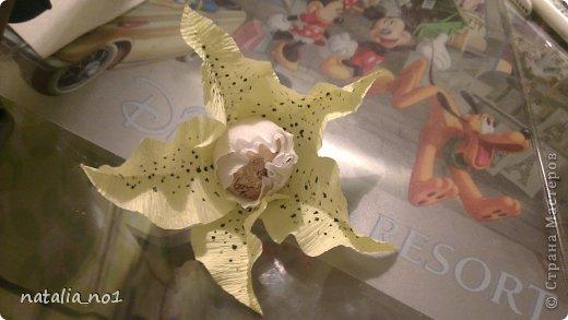 Мастер-класс Свит-дизайн МК по изготовлению лилии Бумага гофрированная фото 13