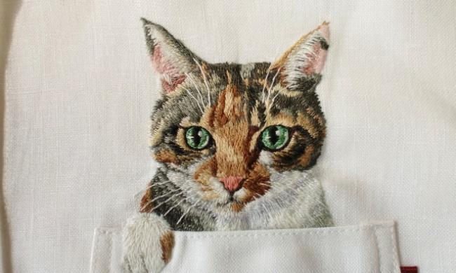 У нас дресс кот