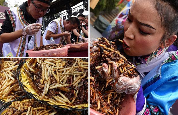 Конкурс по поеданию насекомых в Китае.