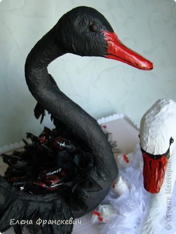 Как сделать чёрный лебедь