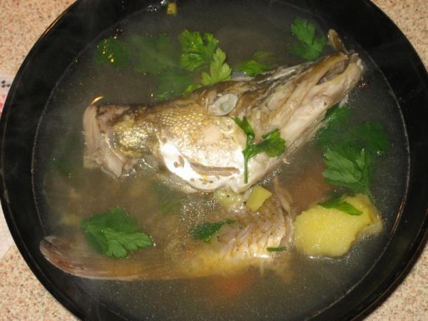 Уха рыбы рецепты