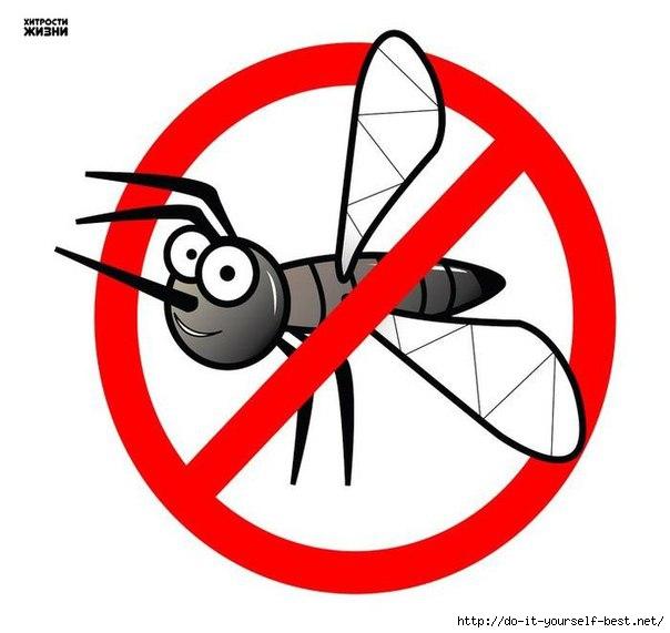 скачать бесплатно программу против комаров - фото 8