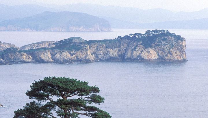 В Японском море начали подни…