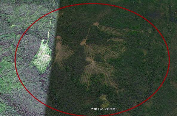 Рядом с перевалом Дятлова обнаружены гигантские древние знаки