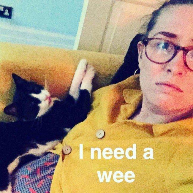 3. Не ходишь в туалет только потому, что котик сидит на коленях домашний питомец, животные, кот, прикол, юмор